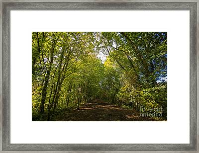 Old Railway Line Framed Print
