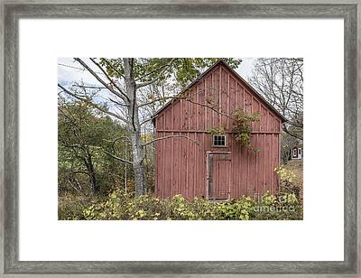 Old Red Shack Framed Print by Edward Fielding