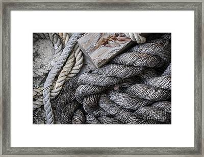 Old Ropes On Dock Framed Print by Elena Elisseeva