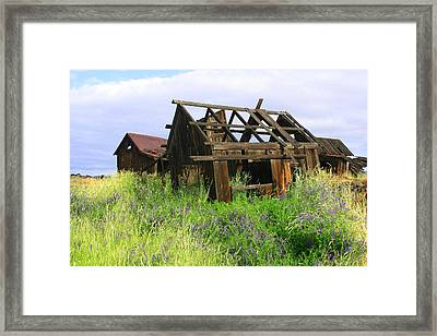 Old Shack At The Gorge Ba 3000 Framed Print by Mary Gaines