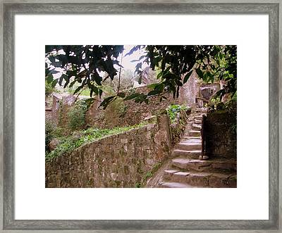 Old Framed Print by Shazz Hedges