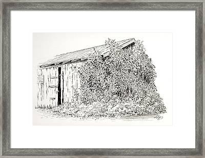 Old Shed Framed Print by Deborah Dallinga