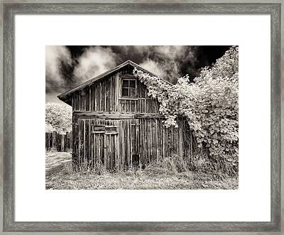 Framed Print featuring the photograph Old Shed In Sepia by Greg Nyquist