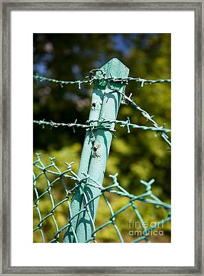 Old Steel Barbed Wire Fence Framed Print by Arletta Cwalina