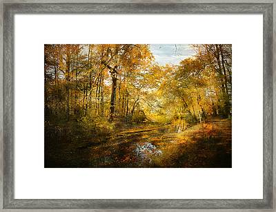 Framed Print featuring the photograph Old Stream by John Rivera