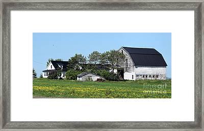 Old Swedish Farm Framed Print by William Tasker