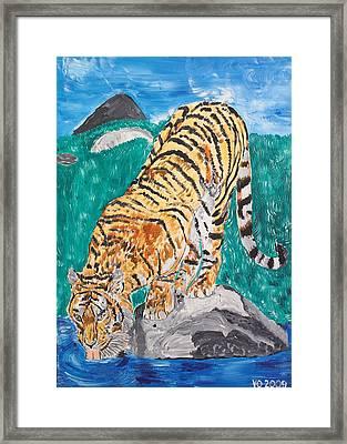 Old Tiger Drinking Framed Print