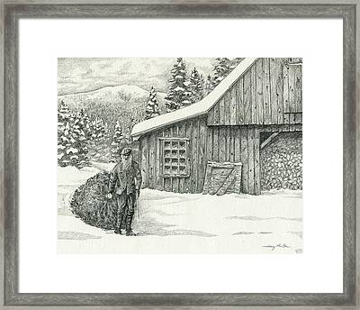 Old Tree Cutter Framed Print