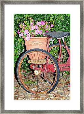 Old Tricycle Framed Print by Susan Leggett