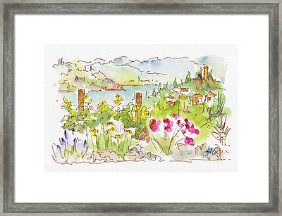 Framed Print featuring the painting Old Vines Okanagan by Pat Katz