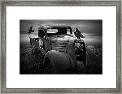 Old Vintage Chevy Pickup Truck With Ravens Framed Print