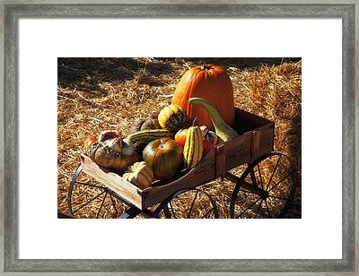 Old Wagon Full Of Autumn Fruit Framed Print by Garry Gay