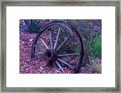 Old Wagon Wheel With Lizard Framed Print by Garry Gay