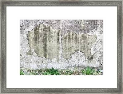 Old Wall Framed Print by Tom Gowanlock