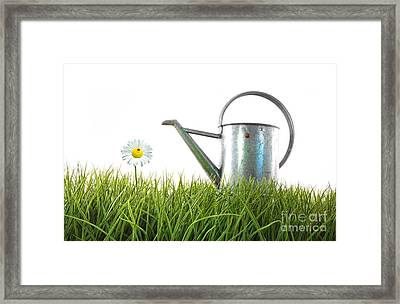 Old Watering Can In Grass With White Framed Print by Sandra Cunningham