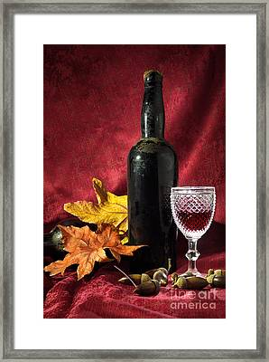 Old Wine Bottle Framed Print by Carlos Caetano