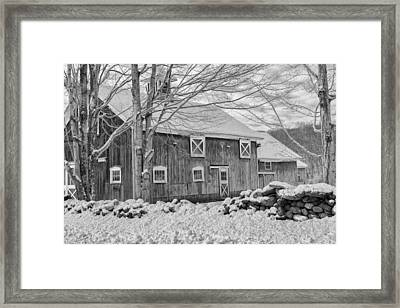 Old Winter Bw  Framed Print by Bill Wakeley