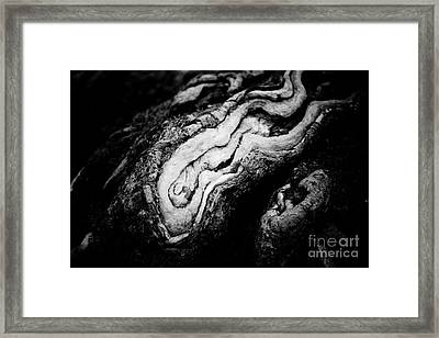 Old Wood Abstract Vintage Background Seacoast Framed Print