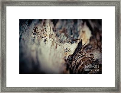 Old Wood Abstract Vintage Texture Fotografika Framed Print