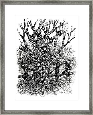 Old Wood And Hazy Days Framed Print
