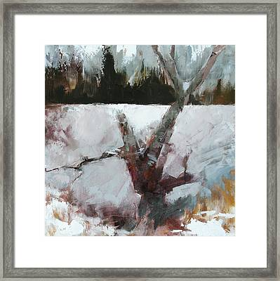 Old Wood Framed Print by Gregg Caudell
