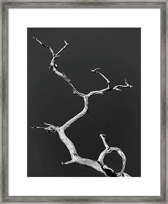 Old Wood I Framed Print