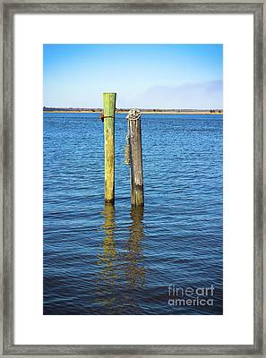 Old Wood Pilings In Blue Water Framed Print by Colleen Kammerer