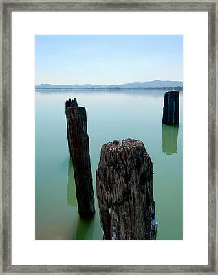 Old Wooden Boat Piles Framed Print by Dorothy Berry-Lound