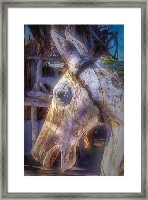 Old Wooden Horse Head Framed Print