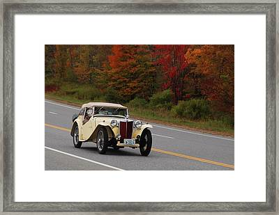 Framed Print featuring the photograph Old Yeller 8168 by Guy Whiteley