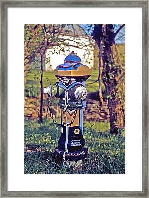 Framed Print featuring the photograph Oldenburg Fireplug by Gary Wonning