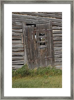 Oldies Framed Print by Marj Beach
