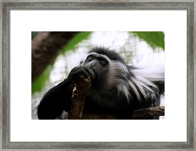 Oldman Sleeping Framed Print by ShadowWalker RavenEyes Dibler