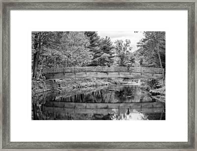 Ole Bull State Park - Bw Framed Print by Steve Harrington