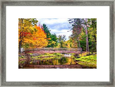 Ole Bull State Park - Pennsylvania - Paint Framed Print by Steve Harrington