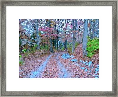 Ole Kentucky Rural Road To Nowhere Framed Print