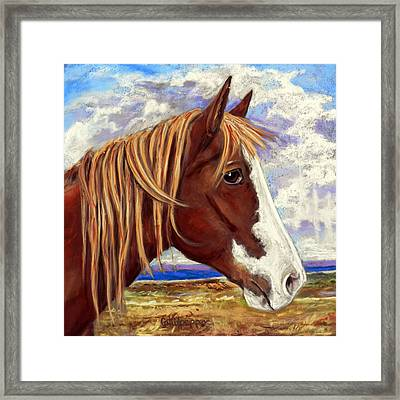 Ole Paint Framed Print by Cat Culpepper