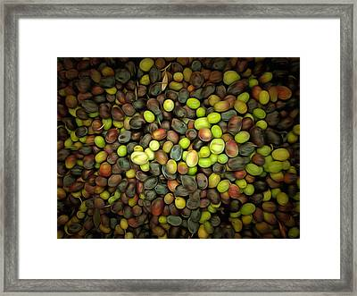 Olive Art Framed Print