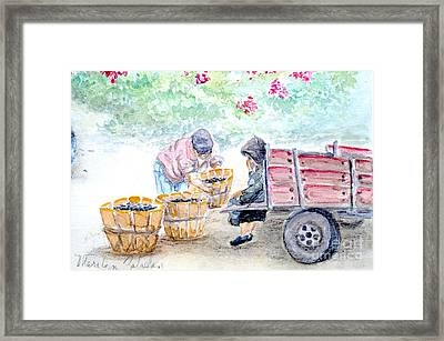 Framed Print featuring the painting Olive Pickers by Marilyn Zalatan