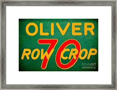 Oliver 70 Row Crop Framed Print by Olivier Le Queinec