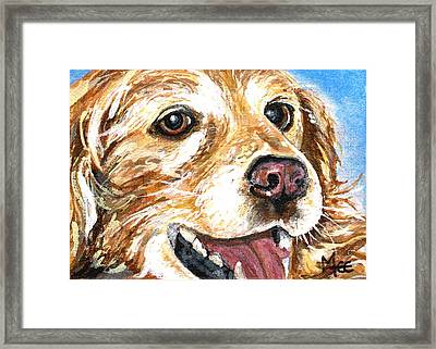 Oliver From Muttville Framed Print by Mary-Lee Sanders