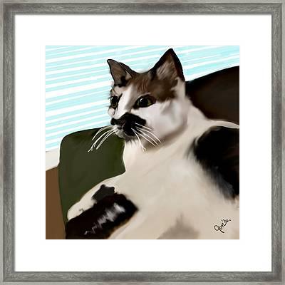 Oliver Framed Print