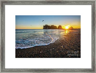Olympic Peninsula Sunset Framed Print