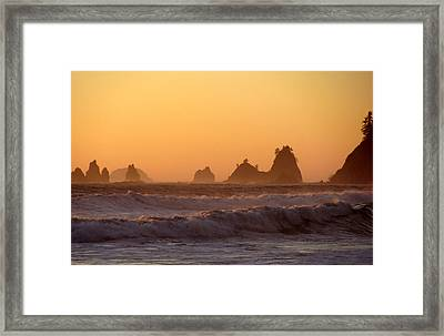 Olympic Sunset Framed Print by Ty Nichols