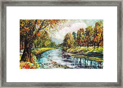 Olza River Framed Print