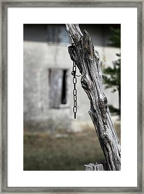 Framed Print featuring the photograph Omen by Helga Novelli