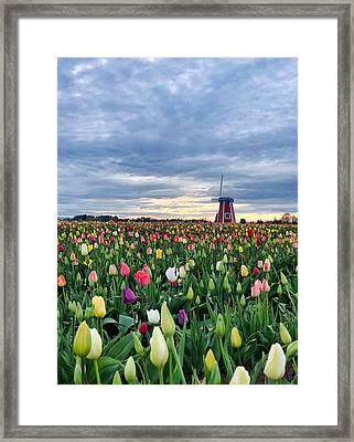 Ominous Spring Skies Framed Print