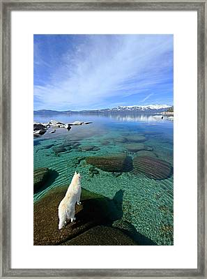On A Clear Day You Can See Forever Framed Print