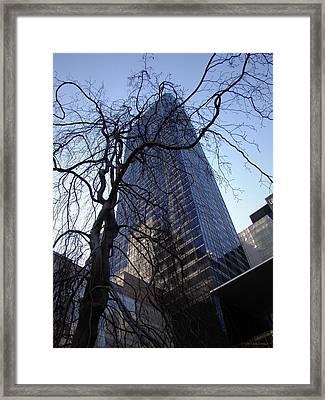 On A Clear Day...moma Courtyard Ny City Framed Print by Arthur Miller