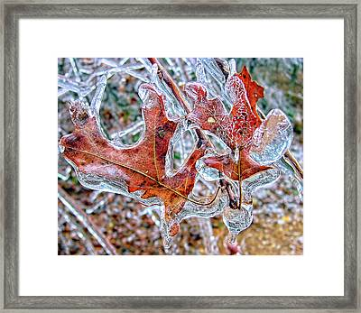 On A Cold Day Framed Print